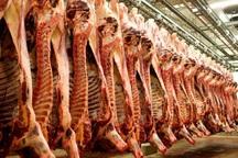60 کانتینر گوشت هفته آینده در بازار مصرف عرضه می شود