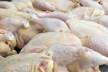 68 درصد گوشت مرغ خراسان شمالی در شیروان تولید می شود
