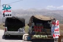 میوهفروشان سیار شهر بانه ساماندهی میشوند