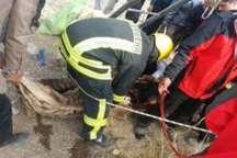 پیکر مقنی سبزواری درون چاه پیدا شد