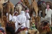 یک مقام پیشین کویتی: وقتی عربها دنبال شترسواری بودند ایران ارتشش را ساخت