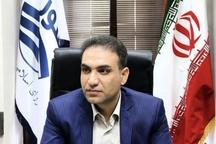راهبرد برنامه و پروژه ای شهرداری بوشهر پنج ساله شود