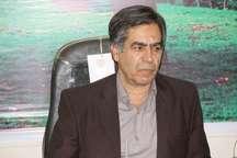ثبت نام 728نفر داوطلب برای انتخابات شورای اسلامی شهر و روستا درساوه