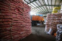 پنج تن برنج و شکر مشکوک به احتکار در زاهدان کشف شد