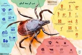 هیچ مورد تب کریمه کنگو طی ۱۰سال گذشته در آذربایجانغربی گزارش نشده است