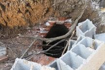 کشف سازه معماری حمامی تاریخی در تالش