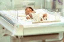 بیش از 9 هزار و 700 نوزاد در استان سمنان به دنیا آمدند