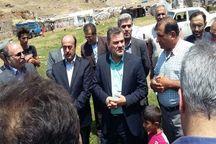 تحویل ۶۰۰ راس نژاد برتر دام به استان اردبیل
