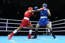 14 تیم در مسابقات کشوری بوکس تهران حضور دارند