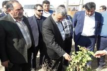 وزیر جهاد کشاورزی واحد فرآوری پسته در دامغان را افتتاح کرد
