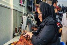 225 فرصت شغلی در کمیته امداد امام خمینی(ره) خمین ایجاد شد