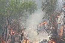 آتش مراتع مرزی ترکمنستان هنوز به خراسان شمالی نرسیده است