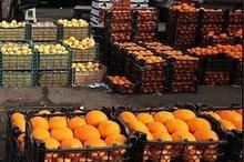 توزیع یکهزار تن میوه شب عید در گلستان آغاز شد