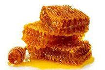 مدیر جهاد کشاورزی: 628 تن عسل در ملایر تولید شد  کسب رتبه تخست تولید عسل در همدان