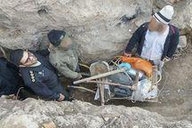 حفاران غیرمجاز در داورزن دستگیر شدند