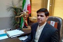 رئیس هیات کشتی اصفهان انتخاب شد