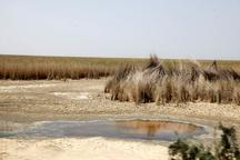 """با ساخت سد """"ایلیسو""""امیدی بهاحیای هورالعظیم نیست   فاجعه زیستمحیطی در انتظار مردم جنوب و غرب ایران"""