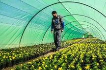 25 میلیارد ریال تسهیلات برای اشتغال روستایی در آستارا پرداخت شد