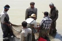 ۲ میلیون قطعه بچه ماهی در منابع آبی کردستان رهاسازی شد