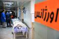 مرگ مرد 35 ساله گچسارانی بر اثر سقوط از درخت