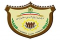 دستگیری 55 متجاوز مرزی در تایباد
