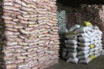 48 تن برنج قاچاق در یزد کشف شد
