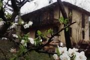 افتتاح  اقامتگاه بوم گردی شاه پلنگ بیگ (با محوریت شال بافی)