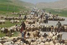 نوارهای مرزی کهگیلویه وبویراحمد برای مقابله باتب کریمه سمپاشی می شود