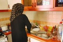 بیمه زنان خانه دار نهادینه نشده است