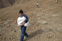 بذرپاشی آنغوزه شیرین در 50 هکتار مراتع ابرکوه انجام شد