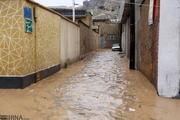 بازسازی 207 واحد مسکونی آسیب دیده از سیل در شیراز پایان یافت