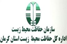 مدیرکل حفاظت محیط زیست کرمان: شکارچی حیوان آبستن تحت تعقیب است
