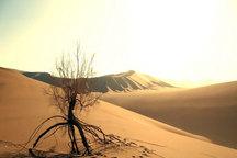 تخریب عرصههای طبیعی سمنان در سایه کمبود اعتبار و نیروی حفاظتی