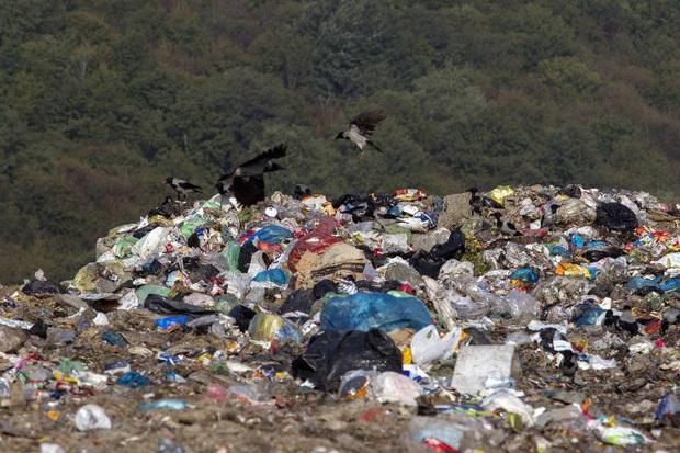 طرح تفکیک حجم زباله در سروان رشت را کاهش می دهد