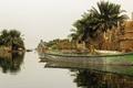 حقابه تالاب بین المللی شادگان از رودخانه کارون تامین می شود