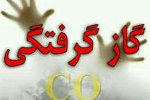 پدر و پسر شیرازی در یکی از بوستان های کرمانشاه فوت کردند
