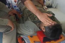 محیط بان فارس با گلوله متخلف، زخمی شد