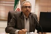 شرکتهای کرمانی از تسهیلات خودروسازی ملی محروم ماندهاند