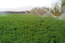کردستان جزو چهار استان کشور در اجرای طرح کشاورزی حفاظتی