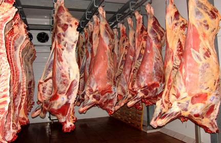 واردات گوشت تا زمان متعادل شدن بازار ادامه دارد
