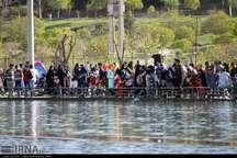 جشنواره رها سازی ماهی های قرمز در ایلام برگزار می شود