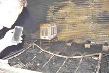 آتشنشانی در مورد علت آتشسوزی جمعه بازار توضیح داد