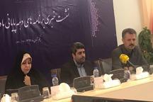 یک مسئول: دولت در حوزه زیارت بسترساز است