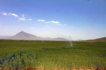 9 طرح کشاورزی در شهرستان بروجن بهره برداری شد