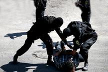 سارق گروگانگیر در رودبار جنوب دستگیر شد