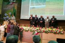 سازمان جهاد کشاورزی استان کرمانشاه سه عنوان برتر کشوری کسب کرد