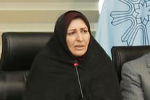 بانوان  اردبیلی ۳۷درصد شاغلان ادارات استان را تشکیل می دهند