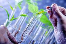محققان کردستانی به 12 یافته تحقیقاتی کشاورزی دست یافتند