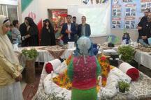 دومین نمایشگاه غذاهای بومی و محلی اردستان برگزار شد
