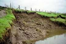 همه شهرستان های فارس با مشکل فرسایش خاک مواجه هستند